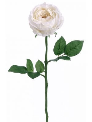 "23"" Garden Cabbage Rose Spray White"