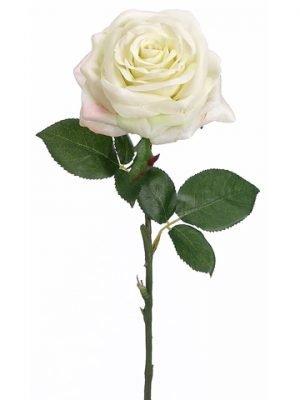 "24"" Rose Spray Pastel Lime"