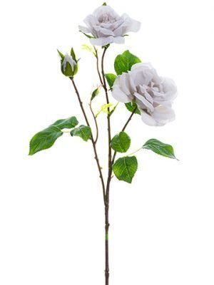 "24"" Rose SprayGray"