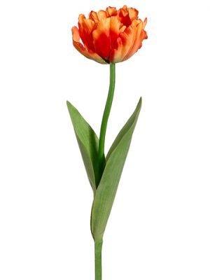 """24"""" Parrot Tulip Spray Orange"""