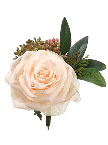 "5.5"" Rose/Sedum BoutonnierePeach Green"