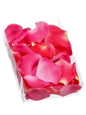 "2""H x 5.25""W x 7.5""L Rose Petal (250 Ea/acetate box) Beauty"