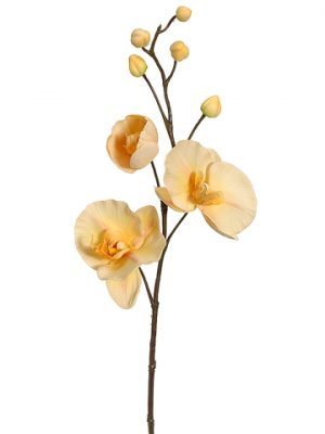 "29"" Phalaenopsis Orchid Spray Two Tone Yellow"