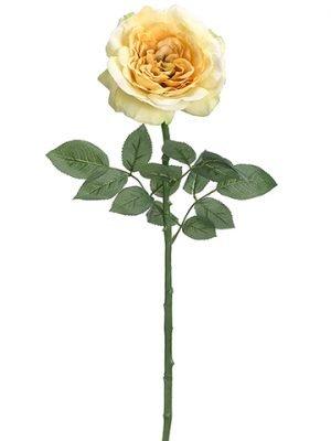 "26"" Single Sophia Rose Spray Yellow"
