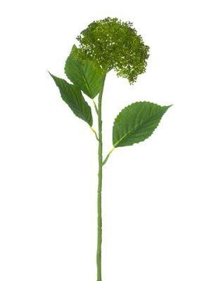 "28"" Hydrangea Berry Spray Green"