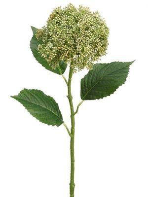"28"" Hydrangea Berry Spray Cream Green"