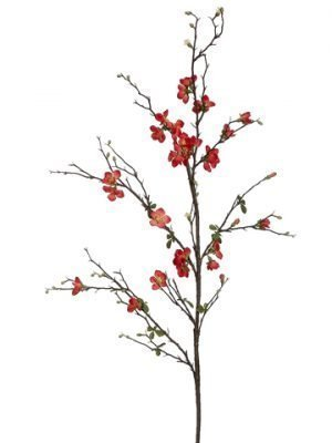 """57"""" Quince Blossom Branch Coral"""