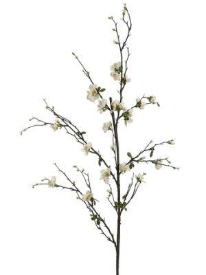 """57"""" Quince Blossom Branch Cream"""