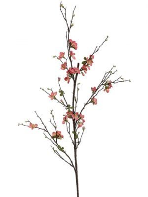 """57"""" Quince Blossom Branch Salmon"""