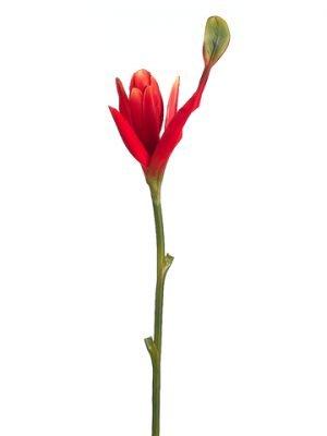 """38"""" Banana Flower Spray Orange Red"""