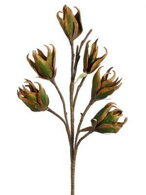 "28"" New Zealand Flax BloomSprayGreen"