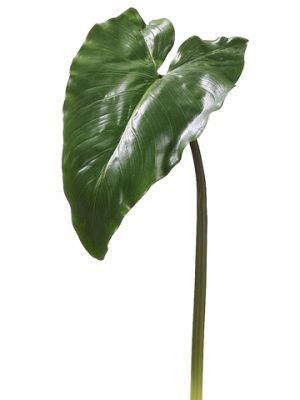 "34"" Calla Lily Leaf Spray  Green"