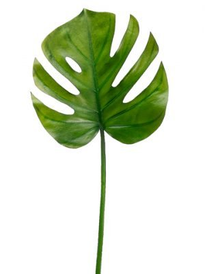 "26"" Split Philodendron Leaf Spray Green"
