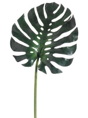 "16"" Medium Monstera Leaf Spray Green"