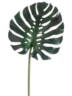 "16"" Medium Monstera LeafSprayGreen"