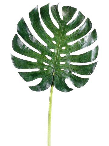 "34"" Large Monstera Leaf SprayGreen"