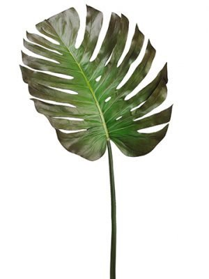 "55"" Monstera Leaf Spray  Green Brown"