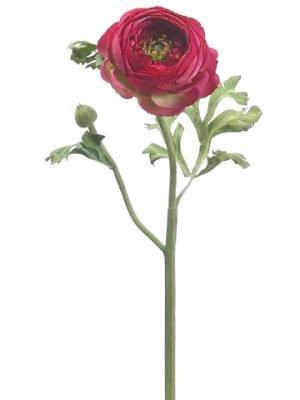 "13"" Ranunculus Spray Beauty"