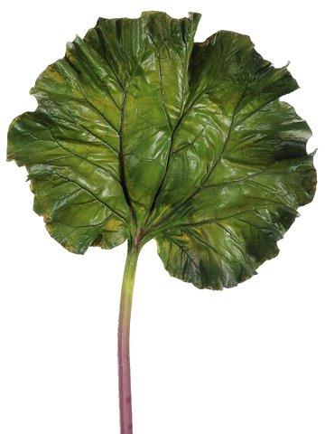"""40"""" Rhubarb Large Leaf SprayGreen"""