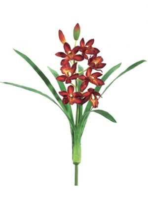 "15"" Mini Cymbidium Orchid Spray w/7 Flw. 2 Buds & 7 Lvs. Burgundy"