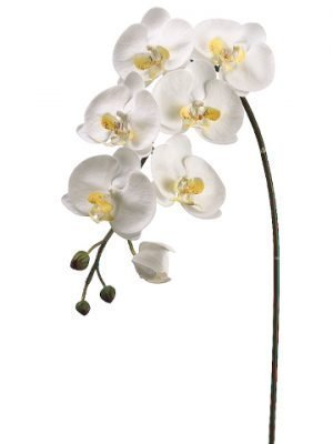 "36"" Large Phalaenopsis Orchid Spray with 6 Flowers and 3 Buds White Yellow"