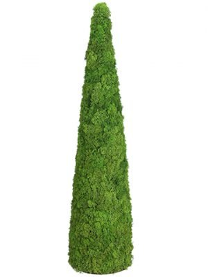 "48""H x 12""D Preserved Reindeer Moss Cone Topiary Green Gray"