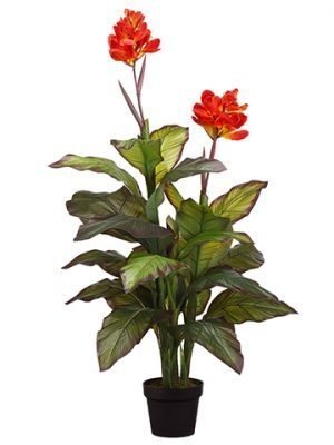 "48"" Canna Plant in Pot Red"