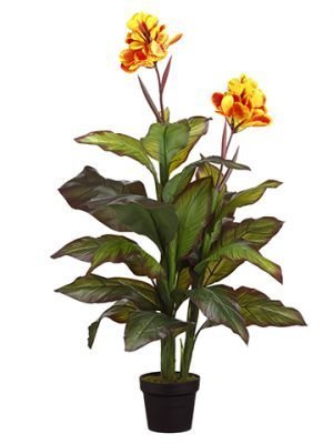 """48"""" Canna Plant in Pot Yellow Red"""