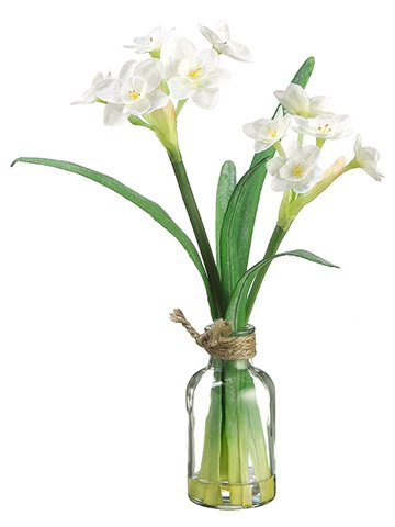 "11"" Narcissus in Glass Vase White"