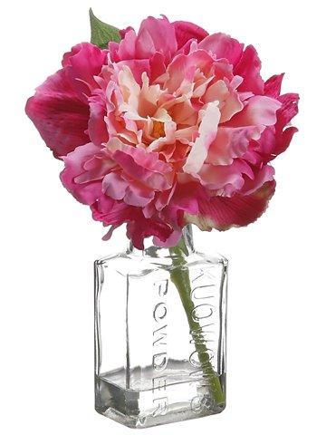 "8"" Peony in Glass Vase Fuchsia Pink"