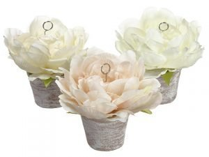 "5.5"" Peony Namecard Holder in Clay Pot (3 Colors /Assortment) Assorted"