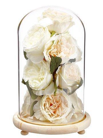 """11"""" Rose/Sedum in Glass DomeCream Peach"""