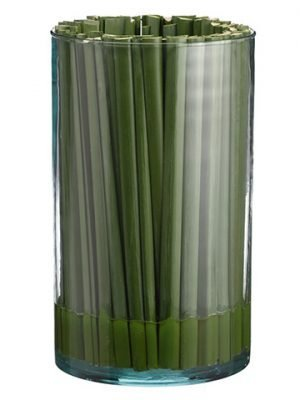 "10""H x 6""D Pond Reed Glass Vase Clear Green"