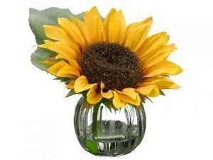"6"" Sunflower in Glass Vase Yellow"