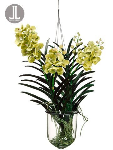 "31"" Vanda Orchid Hanging Plant in Glass Vase Green"