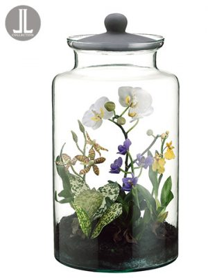 """16"""" Mixed Orchid Plant inGlass Jar with LidMixed"""