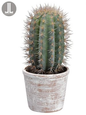 "15.5"" Cactus in Clay Pot Green"