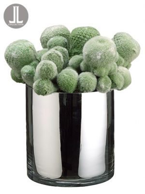 "10"" Mohave Cactus in Glass Vase Green"