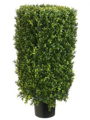 "30"" Rectangular BoxwoodTopiary in Plastic PotTwo Tone Green"