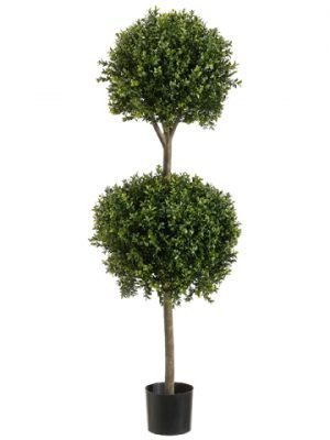 4' Double Ball-Shaped BoxwoodTopiary in Plastic PotTwo Tone Green