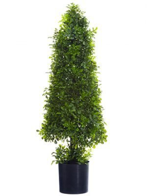 "29"" Boxwood Cone Topiary in Nursery Pot Green"