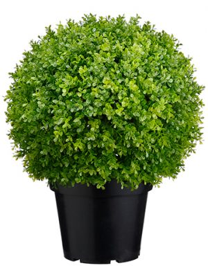 "17"" Plastic Baby's Tear Ball Topiary in Pot Two Tone Green"