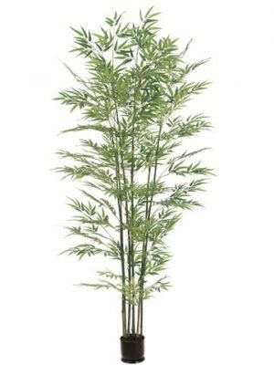6' Bamboo Tree x7 with 1680 Leaves in Pot