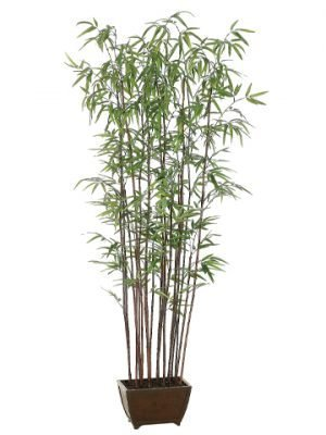 "72"" Bamboo Wall Tree x19 with 1276 Leaves in Wood Container Green"