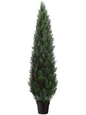 "72"" Cedar Topiary in Plastic Pot (knock-down Packing) Green"