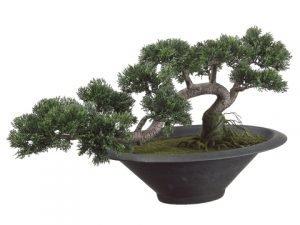 """14""""H x 20""""L Trailing CedarBonsai Tree in PotGreen"""