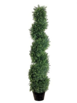 4' Spiral Cedar Topiary inPlastic PotGreen