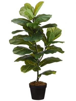 "31.5"" Fiddle Leaf Plant inPotGreen"