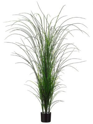 "71"" Grass Bush in Black Plastic Pot Two Tone Green"