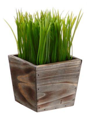 """8""""H x 4.5""""W x 4.5""""L Grass in WoodPlanterGreen"""